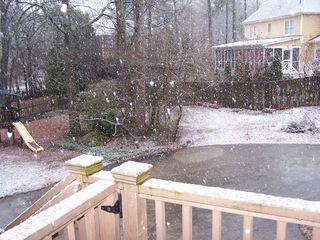 Snow 3-2-2010 002
